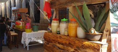 Inicia el Sexto Festival del Pulque en Tlaxco, Tlaxcala