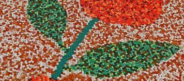 Indígenas mexicanos buscan récord con el mosaico más grande del mundo