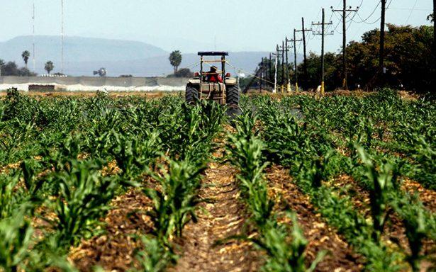 En los 23 años del TLCAN, sector agropecuario captó 0.03% en IDE