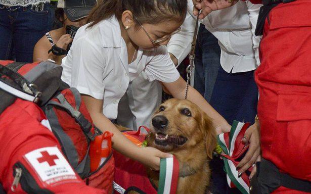 Emotivo recibimiento a rescatistas que participaron en la CDMX