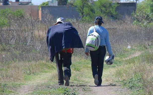 Regresan al campo 40% de los deportados para integrarse a actividades agrícolas