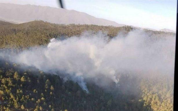 Se registra primer incendio del año en área serrana de Nuevo León