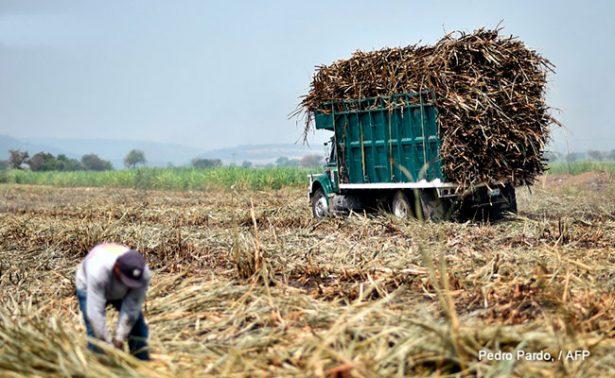 México alcanza nuevo acuerdo con EU; enviará menos azúcar refinada
