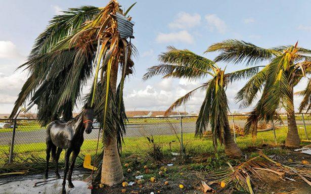 María retoma fuerza y evoluciona nuevamente a huracán