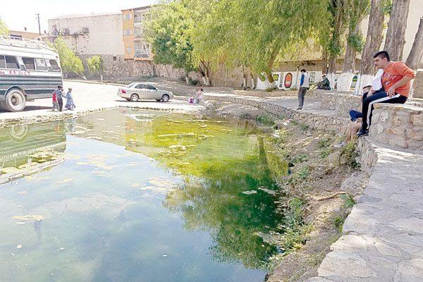 Venero da vida a peces en el río Parral