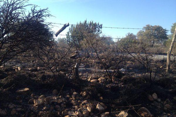 Incendio de pastizal en ejido San José de los Bailón tiene más de 24 horas