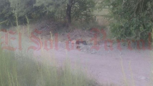 Trasciende identificación del victimado esta mañana  en Valle de Zaragoza