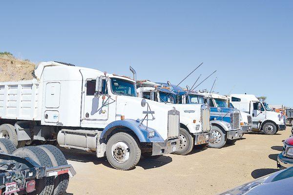 No se emitirá el engomado para identificar 800 camiones troceros