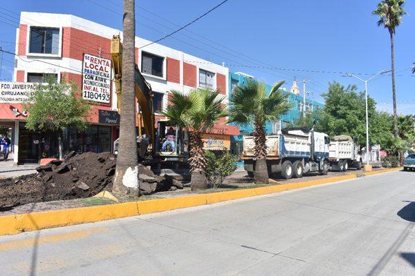 Inician obras finales de concreto en la avenida Independencia