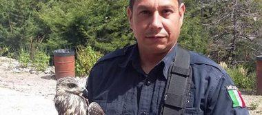 """Burló """"El 42"""" los filtros de seguridad para ingresar a la Policía de Madera"""