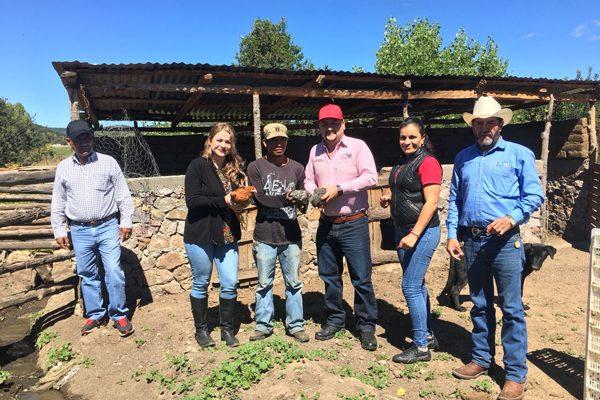 DIF Municipal y Estatal entregan 18 gallineros en 7 comunidades de Balleza