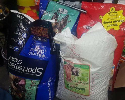 Amigos de los Cachorros Felices instalan centro de acopio para mascotas damnificadas