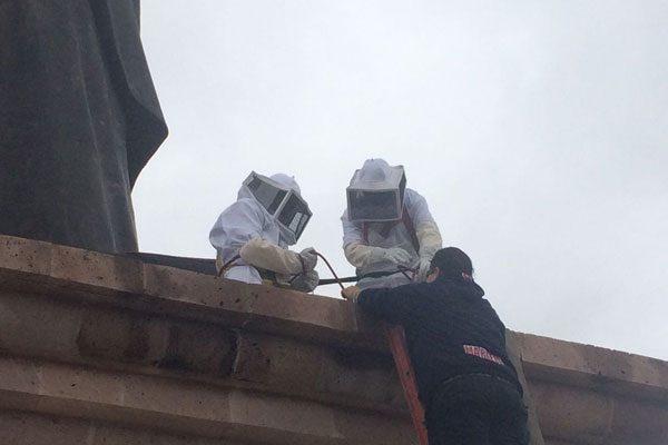 Ubican panal de abejas en los brazos de la estatua de San José