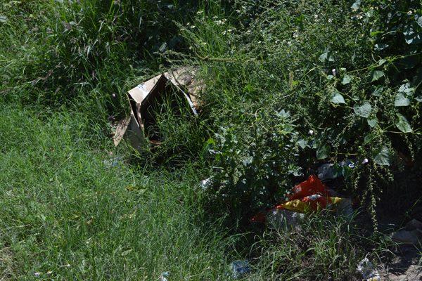 Vecinos de la colonia Cnop denuncian basurero clandestino