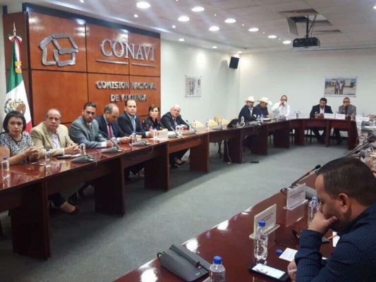 Alcalde de Balleza gestiona material de construcción para viviendas