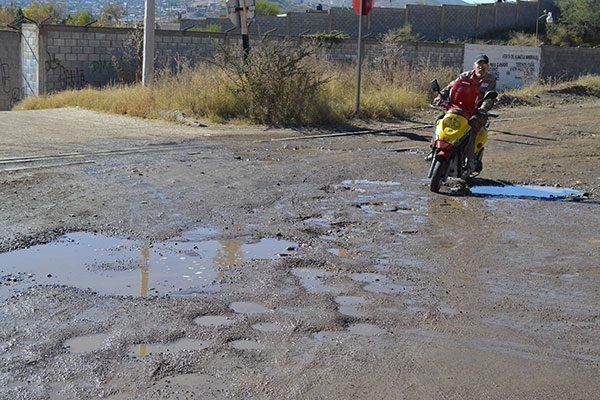 Baches y maleza, problema latente en la calle Hacienda La Quemada