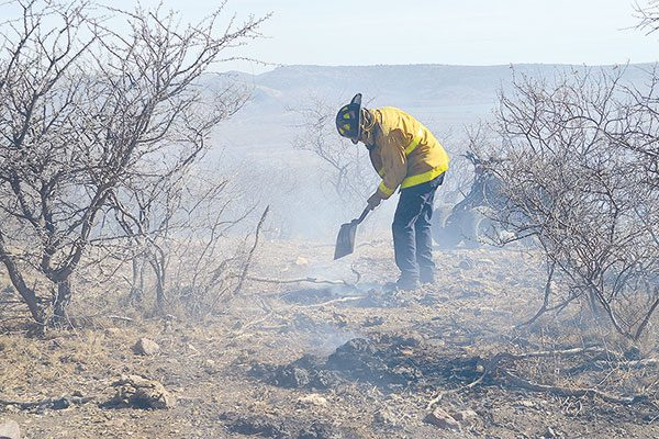 Incendio arrasa con 500 Has. de pastizal en Rancho Primero