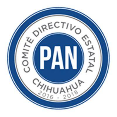 Hoy darán a conocer la plataforma legislativa y municipal del PAN