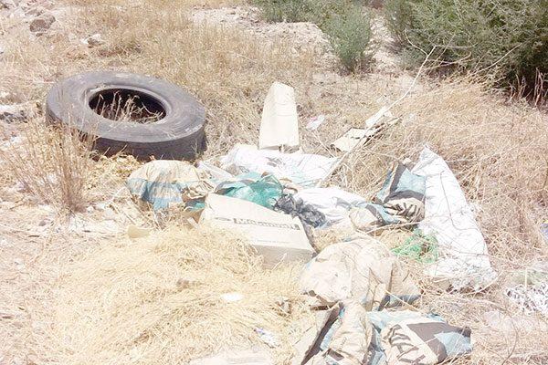 Impera la basura en un sector de la colonia Guadalupe Victoria