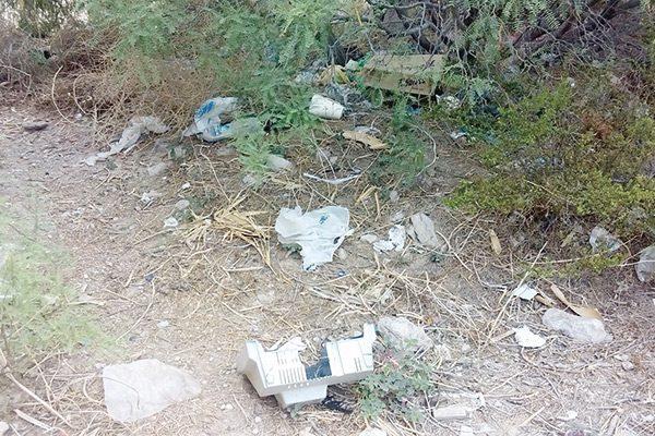 Tapia de la colonia López Dávila, nido de malvivientes y basurero clandestino