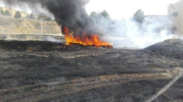 Arde en llamas basura y pasto en la UACH