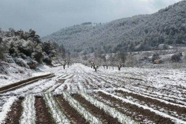 Augura Sagarpa buen año para agricultores