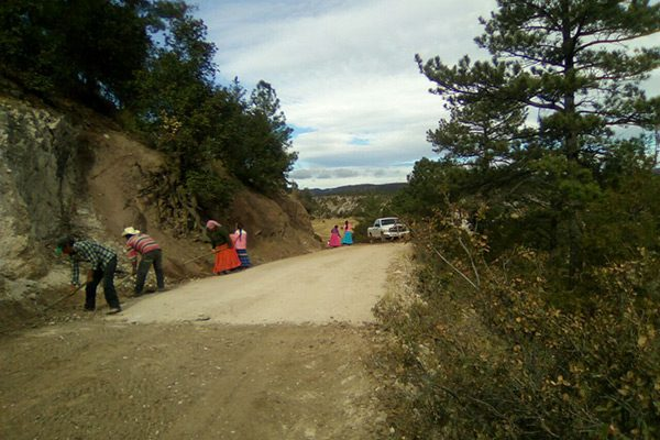Implementarán empleo temporal por restauración de caminos