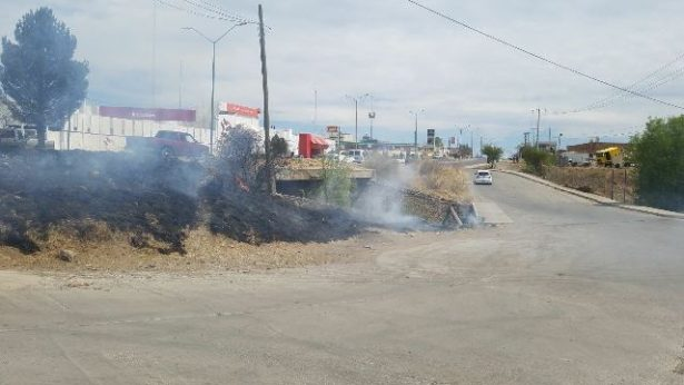 Incendio de pasto a la entrada de Palmilla; se extinguió por si mismo