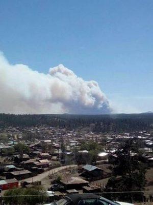 Combaten 150 brigadistas, incendio que amenaza poblado de Madera