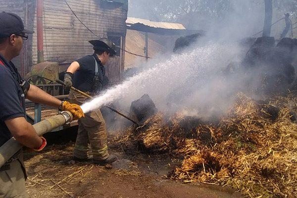"""Se incendian 300 pacas de  alfalfa en rancho """"La Cañada"""""""