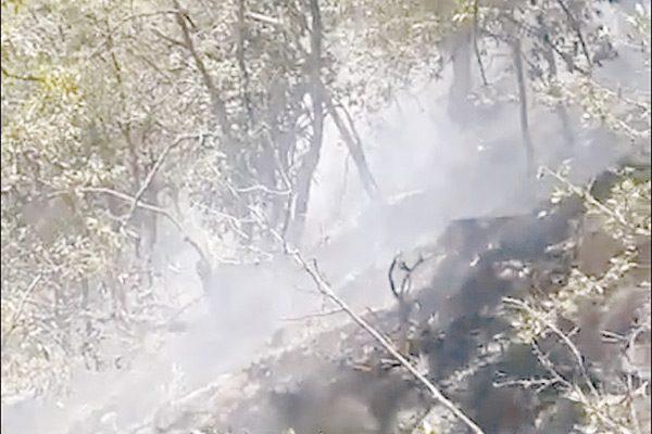 Incendio lleva cinco días en sierra de Santa Bárbara