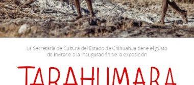 """Anuncia cultura dos exposiciones de alta relevancia cultural, dentro del marco del """"Programa de Atención de Jornaleros Agrícolas Migrantes"""""""