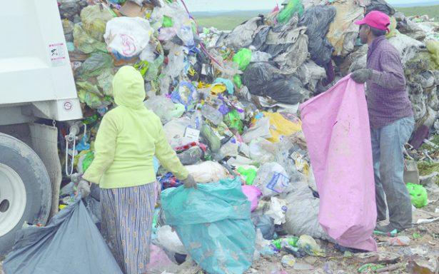 La basura de unos es el sustento de otros…