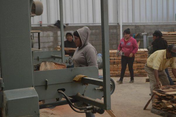 Aserraderos generan empleos a madres de familia en Gpe. y Calvo