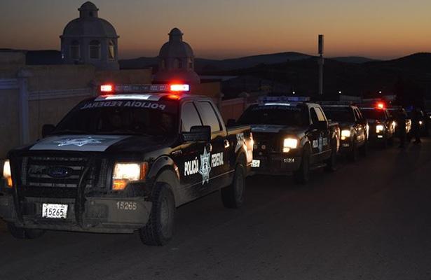 PF y Ejército destruyen 8 hectáreas en narcopredio