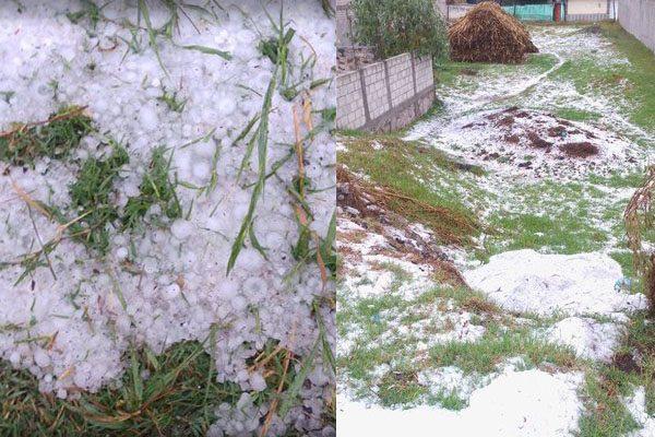 Viviendas destrozadas y cultivos anegados, el saldo de las intensas lluvias