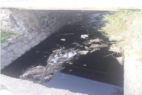Desechos industriales contaminan arroyos de Atlixco