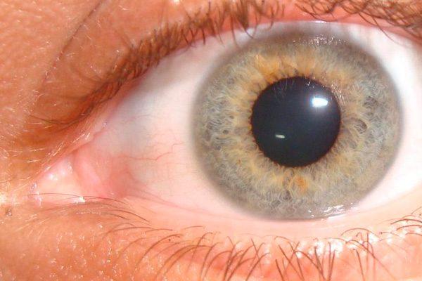 8 datos sorprendentes sobre el ojo humano que no sabías