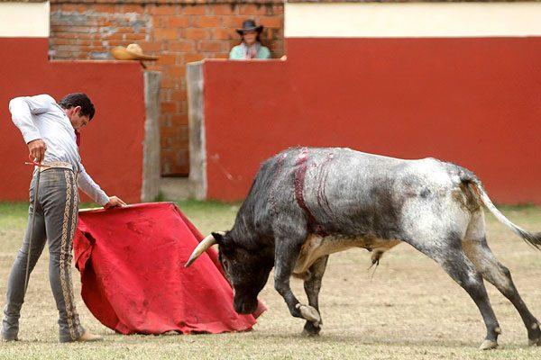 El torero Jerónimo Ramírez con agenda y en preparación continua