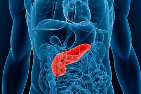 Páncreas artificial, casi una realidad en Puebla