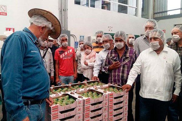 Inicia exportación de tuna a Estados Unidos