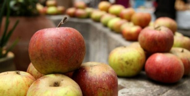 Eligen Reina para la Feria de la Manzana en Zacatlán