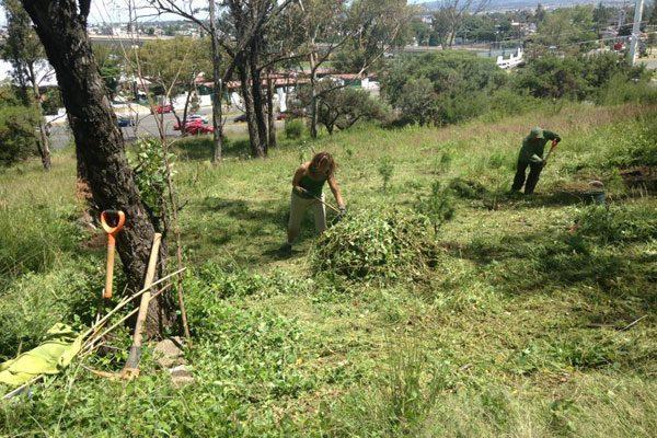 Blindan áreas verdes de Puebla capital; no se venden ni cambian uso de suelo
