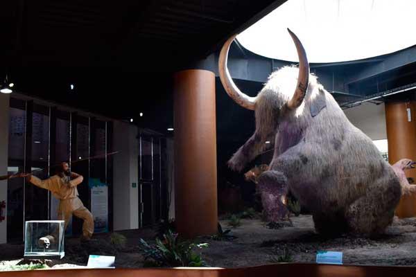 Échale un ojo al nuevo Museo de la Evolución en Tehuacán