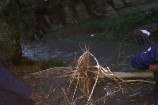 Niña de 7 años muere al caer a barranca, fue arrastrada por la corriente