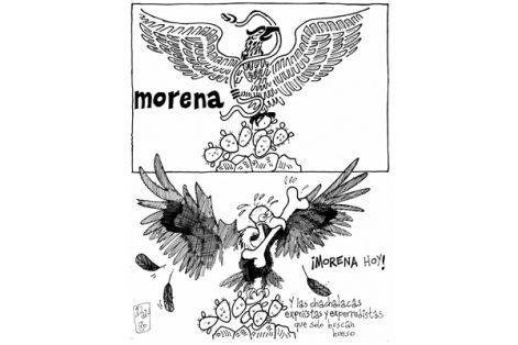 Morena hoy