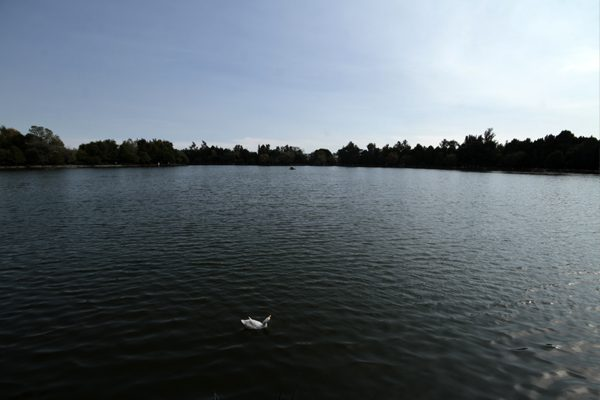 Laguna de San Baltazar al 90 por ciento de su capacidad