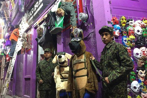 [Video] Convierten a Frida, la perra rescatista de México en disfraz para Halloween