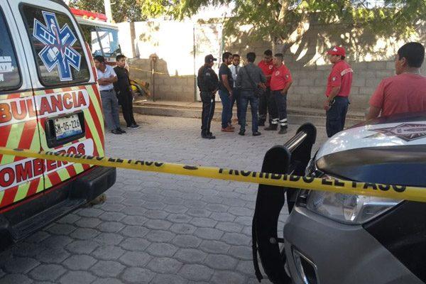 Pit bull mata a su dueño de 70 años en Puebla