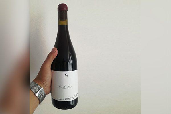 Produce Puebla su primer vino tinto